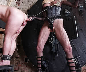 Category: cock torture