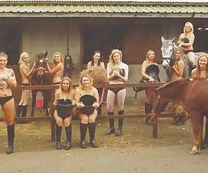Related gallery: horse-riding-bitches (click to enlarge)